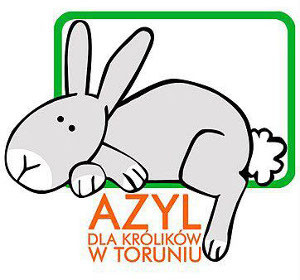 logo_azyl